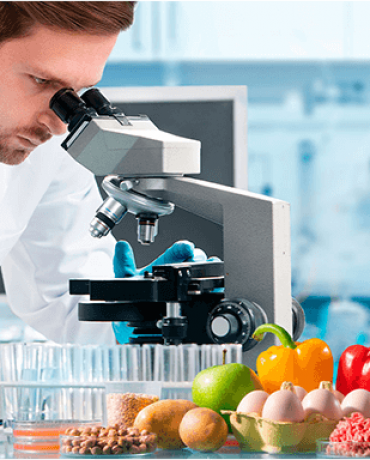 Alimento seguro e sustentável